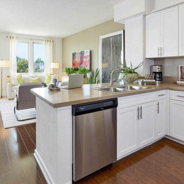 Apartments For Rent In San Jose Irvine Company Fascinating San Jose 1 Bedroom Apartments For Rent Model Remodelling