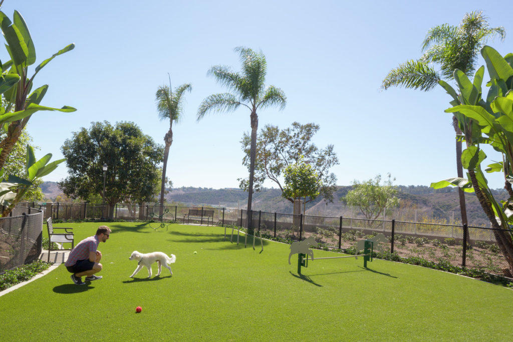 Apartments in San Diego with Dog Parks